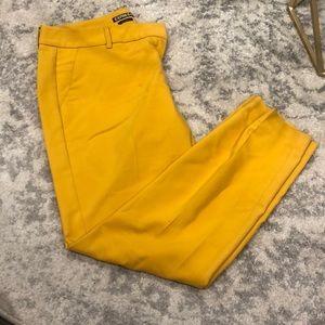Size 8R express dress pants